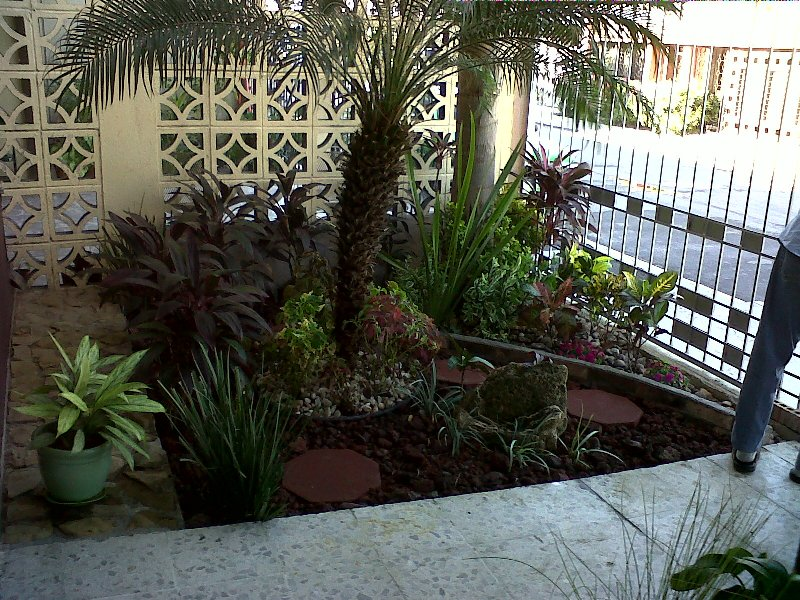 Jardinera de sombra espacios inteligentes imagen en - Plantas de sombra para jardin ...