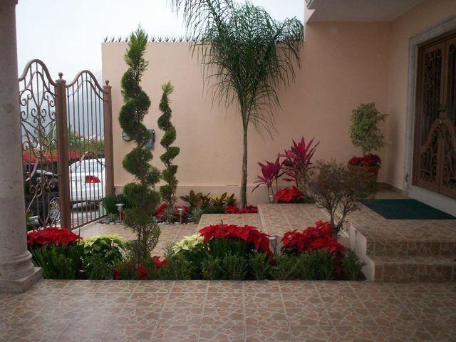 Decorando en navidad el colorido que las noche buenas le for Adornos de navidad para jardin